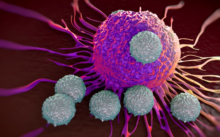 New CAR T-cell Therapy Seen to Induce Lasting Remission in Advanced Multiple Myeloma Patients