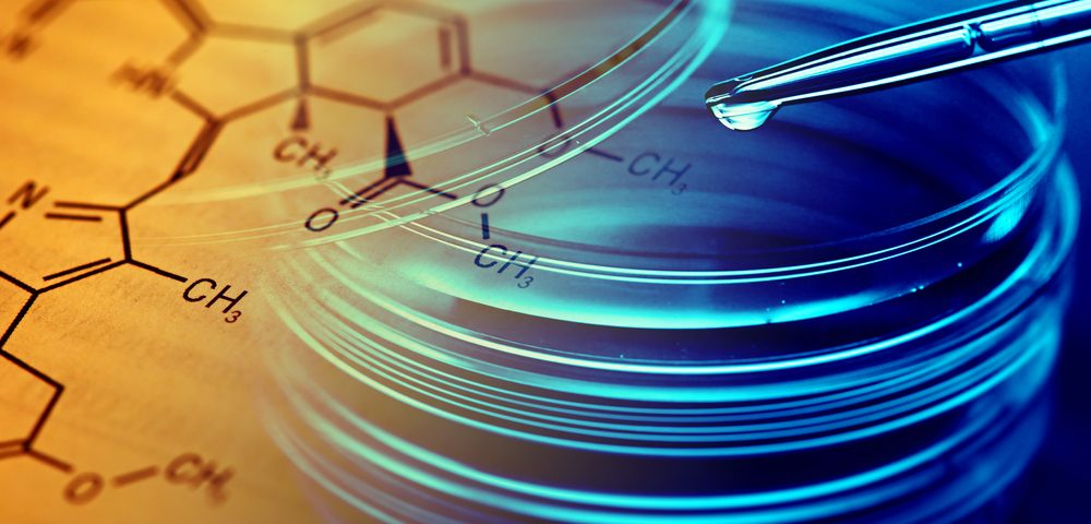 GMI-1271 Restores Velcade's Punch Against Myeloma in Mice, Study Reports